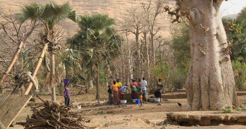 Konfliktit ovat johtaneet nälänhätään esimerkiksi Kongon demokraattisessa tasavallassa, Nigeriassa, Etelä-Sudanissa ja Burkina Fasossa.