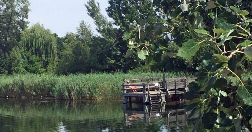 Alte Donaun uimalaiturialueella – laitureita on paljon – tunnelma on kuin suomalaisella maaseudulla.