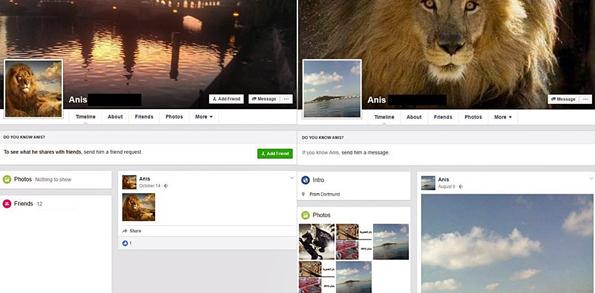 Kaksi Anis Amrin eri sukunimellä käyttämää Facebook-profiilia.