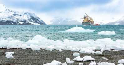 Öljyonnettomuus arktisella alueella – suurimpina kärsijöinä olisivat jääkarhut ja merilinnut