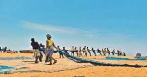 Matkailua Afrikkaan tieteen hyväksi – rokotteella ripulia vastaan