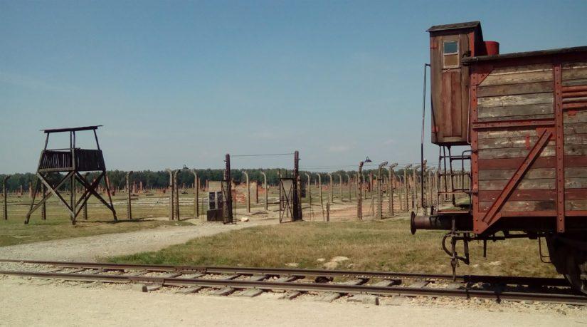 Unkarinjuutalaiset kuljetettiin keskitysleirille karjavaunuilla, joihin oli kahdeksan hevosen sijasta sullottu sata ihmistä.