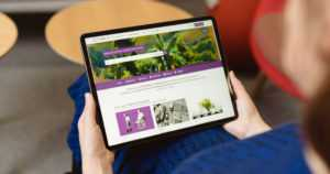 Finna.fi kasvattaa yhä suosiotaan – taidetta voi kokea myös museo, taiteilija tai taidemuoto kerrallaan