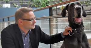 """Pelokkaat tanskandoggit tutkittiin omistajien toivomuksesta – """"Suurikokoisilla koirilla pelokkuus vaikeuttaa käsittelyä ja hallintaa"""""""