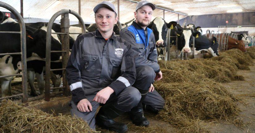 Heiskasen veljekset Mikko ja Lassi ottivat kotitilan nimiinsä kuusi vuotta sitten. – Tilaa on kehitetty ripeään tahtiin, joista tuorein siirto on karjan siirtäminen vuokranavettaan.