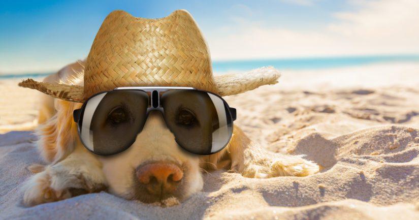 Kesäkuussa on yli 30 asteen lämpötiloja keskimäärin 3–4 kertaa vuosikymmenessä.