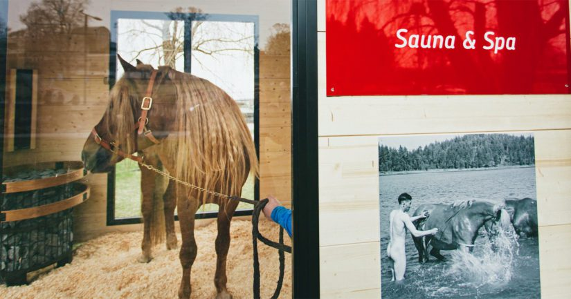 Sota-aikana hevosia hoidettiin rintamalla täisaunassa ja sittemmin sauna on ollut osa urheiluhevosten hyvinvoinnista huolehtimista.