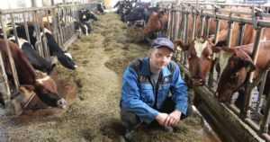 Ruokintavirhe ajoi maitotilan kassakriisiin –