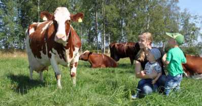 """Maidontuotantotilalla ollaan avoimia uuden edessä – """"Unelmat ovat tärkeä osa kehitystä"""""""