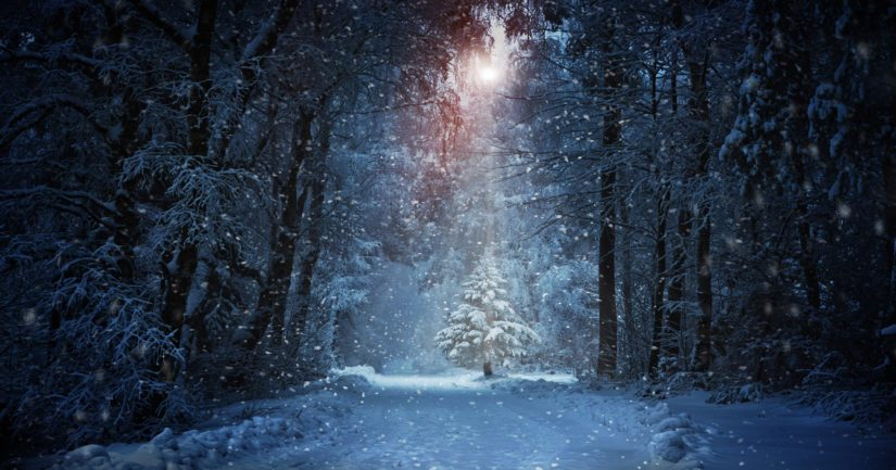 Joulukuusi tuli mukaan joulunviettoon vasta 1400- tai 1500-luvulla.