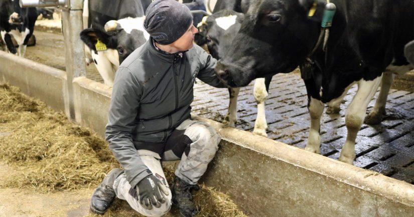 Keräsen maitotilalla on tehty muutaman vuoden aikana mittavia muutoksia myös työ- ja toimintatapoihin.