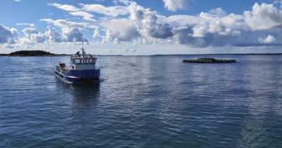 EU:n barometri selvitti – koronapandemia lisäsi suomalaisten kalan kulutusta