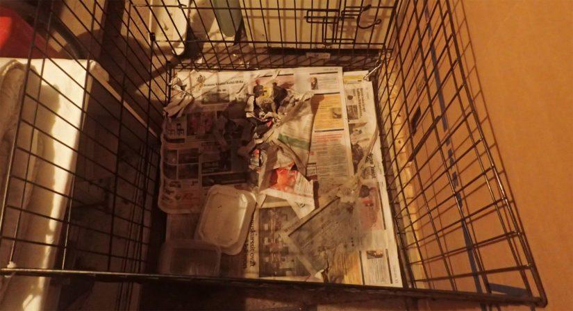 Koirien säilytystila oli likainen ja lähes lämmittämätön, häkissä oli myös koirien virtsaa ja ulostetta.