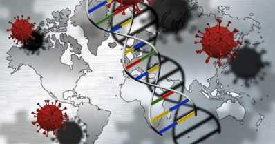 Perintötekijät selittävät koronavirukseen liittyviä riskitekijöitä – tutkijat löysivät 13 altistavaa geenialuetta