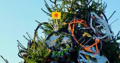 Satavuotiasta Suomea juhlittiin kuusen ympärillä Brightonissa – mukana myös pormestari ja joulupukki