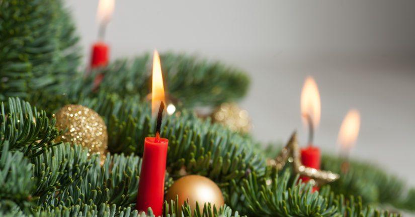 Joulukuusi ja myös takka voivat olla kohtalokkaita kukille.