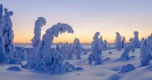 Kadonnutta hiihtäjää etsittiin Urho Kekkosen kansallispuistossa – avainasemassa mobiilisovellus