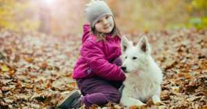 Lemmikkikoiratutkimus vahvistaa – luontoyhteys on lapsenkin terveydelle tärkeä
