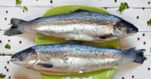 Kalan ja kalatuotteiden viennin määrä kasvoi hieman viime vuonna – kokonaisen norjalaisen lohen tuonti väheni