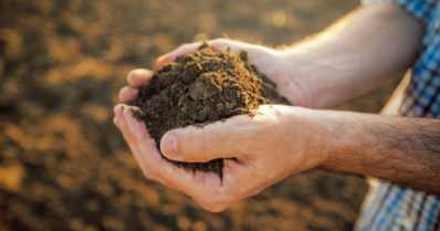Multa- ja kompostituotteista voi löytyä legionellabakteereja – ei kannata pöllyttää hengitysilmaan