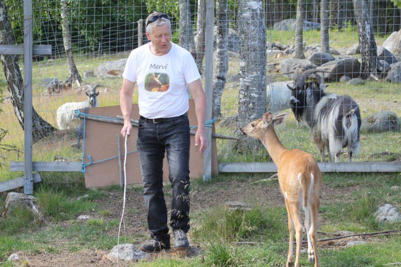 Markku elää oman näköistänsä elämää eläinten ympäröimänä. – Perustin villieläinhoitolan sattumalta, mutta tarpeesta. Jokainen eläin tarvitsee uuden mahdollisuuden.