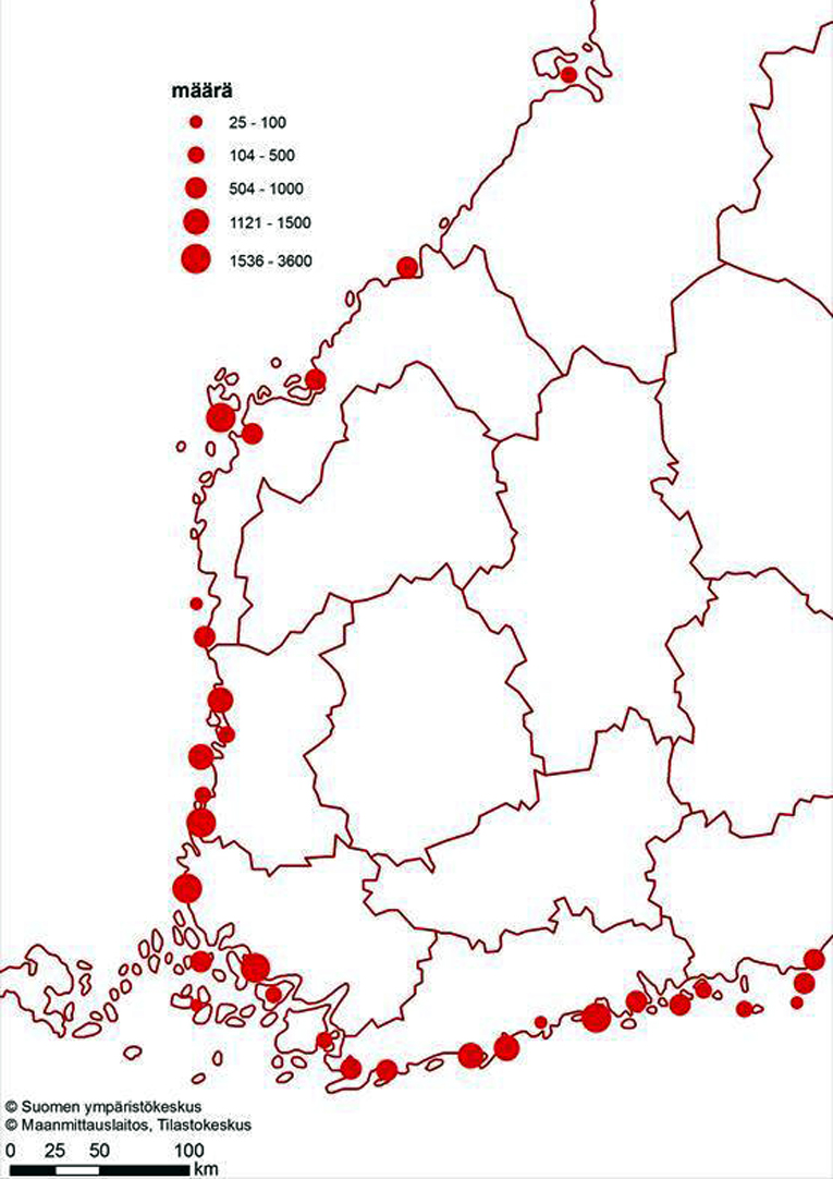 Merimetson alueelliset pesämäärät (kpl) vuonna 2020.
