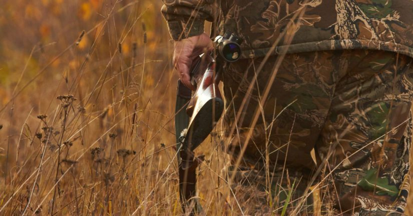 Nyt käynnistyy karhun ja vesilintujen metsästys, hirvieläinten metsästyskausi alkaa hieman myöhemmin.
