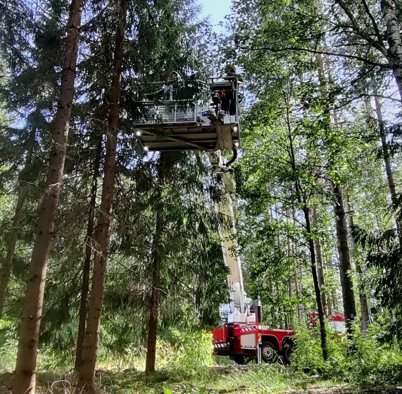 Soitto hätäkeskukseen laukaisi pattitilanteen. Etelä-Savon Pelastuslaitos toimi lähtökäskyn saatuaan hyvin esimerkillisesti ja pelasti puuhun kiivenneen nopeasti ja eläinystävällisesti.