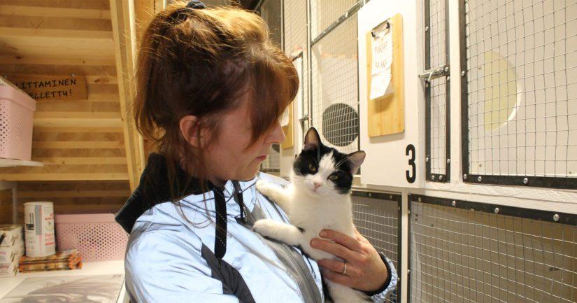 Nanne Korpivaaran mukaan valtaosa Koiramäen Majatalon asiakkaista on löytökissoja. – Löytyneistä koirista valtaosa on karkureita, mutta kissojen kohtaloksi on muodostunut hylkääminen.