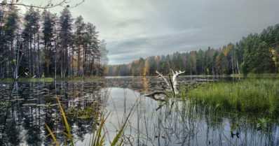 """Metsähallituksen kohteet ruuhkautuivat – """"Lähtekää luontoon, mutta välttäkää suosituimpia ulkoilupaikkoja"""""""