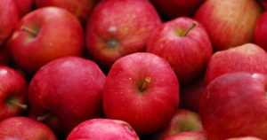Jatkossa et voi tuoda omenaakaan EU:n ulkopuolelta – kasvinterveystodistus lähes mahdoton saada