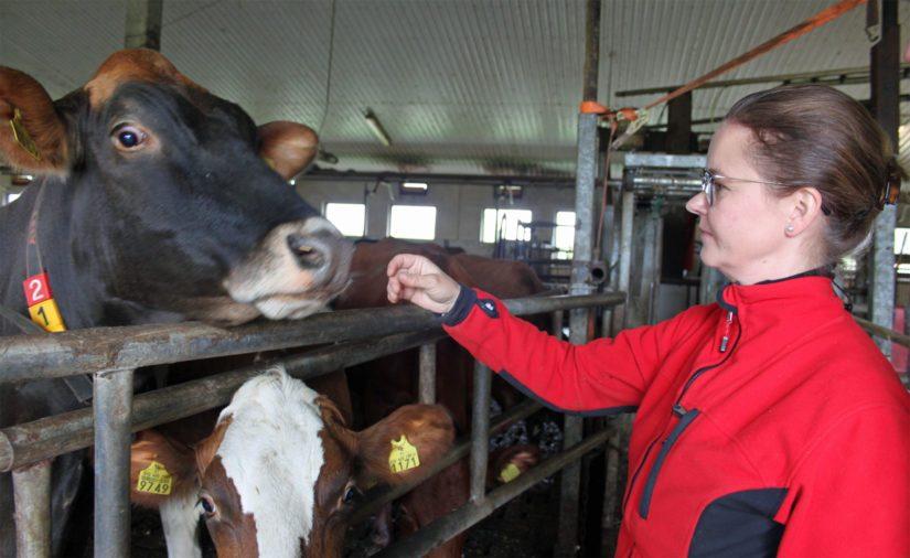Ennen emännyyttä Outi hankki elämänkokemusta muun muassa Saudi-Arabiasta, jossa hän työskenteli kahden vuoden ajan farmaseuttina.