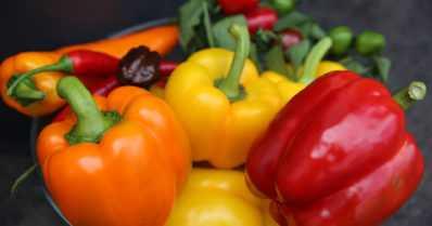 Liikennevalovärejä ja terveyttä lautasille – paprikat ovat vuoden vihanneksia