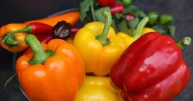 Värikkäät paprikat ovat vuoden 2020 vihanneksia – terveyttä ja tulisuutta ruokapöytään