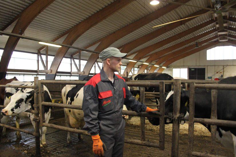 Sirviön lypsykarjatilalla saadaan säästöjä käyttämällä myös ulkopuolisia asiantuntijoita. – Raha tulee maidosta, joten sen ympärille on rakennettava ammattinsa osaava yhteistyöverkosto.