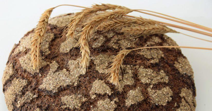 On olemassa hyvät edellytykset, että myös ensi talvena ruisleipä leivotaan kotimaisesta rukiista.