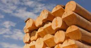 Mekaaniseen metsäteollisuuteen sopu – ilmoitetut työnseisaukset peruuntuvat