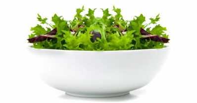 Raaka-aineet ratkaisevat salaatissakin – itse tehdyt vegaaninen majoneesi ja pesto ovat menestyksiä