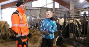 """Sannan ja Markun karja on Suomen korkeatuottoisimpia – """"Tavoitteet on aina pidetty saavutettavuuden rajoissa"""""""