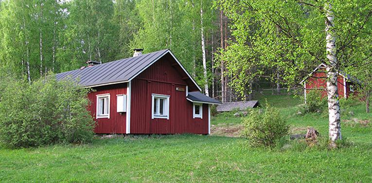 Metsähallituksen Seppälän tila sijaitsee Kolin kansallispuiston eteläosassa.