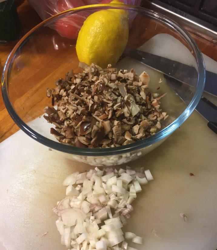 Sipuli ja sienihakkelusta – tästä se lähtee!