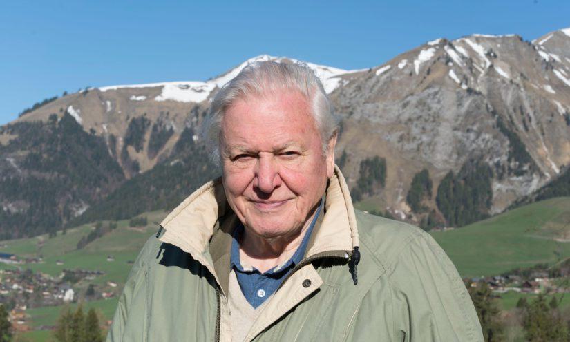 Upea projekti sai 90-vuotiaan Sir David Attenboroughin osallistumaan luontodokumentin tekoon. (Kuva BBC/Ruth Peacey)