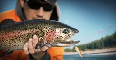Kuka valvoo ainutlaatuisia kalavesiämme? – Muun muassa yli 3300 koulutettua kalastuksenvalvojaa