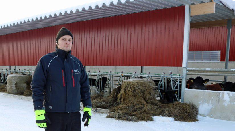 Emolehmiä kasvattava Toni Jakonen uskoo tuotantosuunnan muutoksen olleen ratkaisuista parhaimman. – Kannattavuus ja jaksaminen ovat asioita, joita kannattaa tässä lajissa puntaroida moneen malliin.