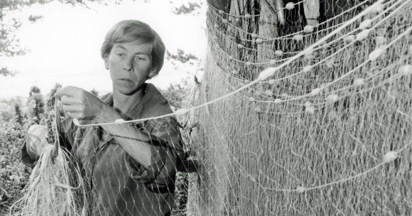 Tove Jansson loi Muumi-tarinat Pellingin saaristossa inspiroituneena meren kauneudesta ja voimasta.