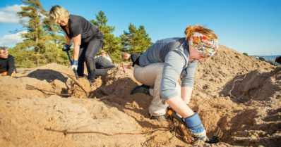 """Yli 2 200 ihmistä torjui haitallisia vieraskasveja talkoissa – """"Ihmisillä on vahva halu auttaa luontoa"""""""