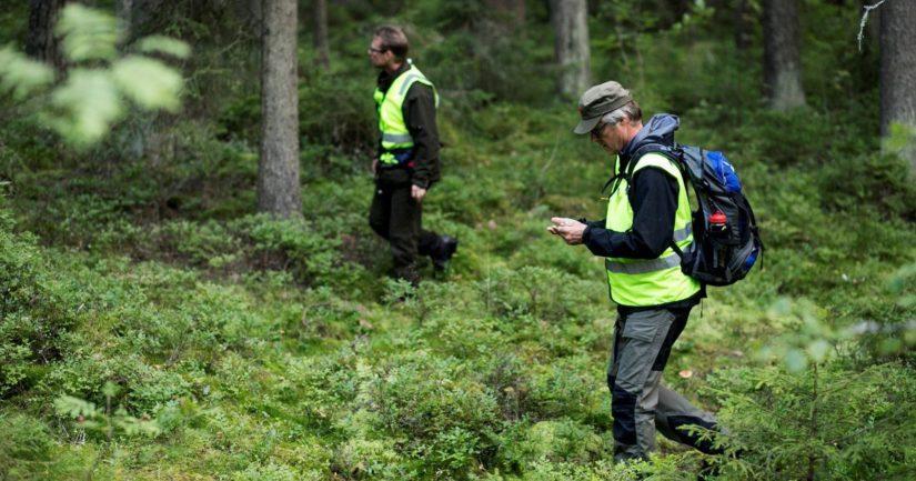 Viranomainen hälyttää Vapaaehtoisen pelastuspalvelun auttamaan useimmiten kadonneen etsinnässä.