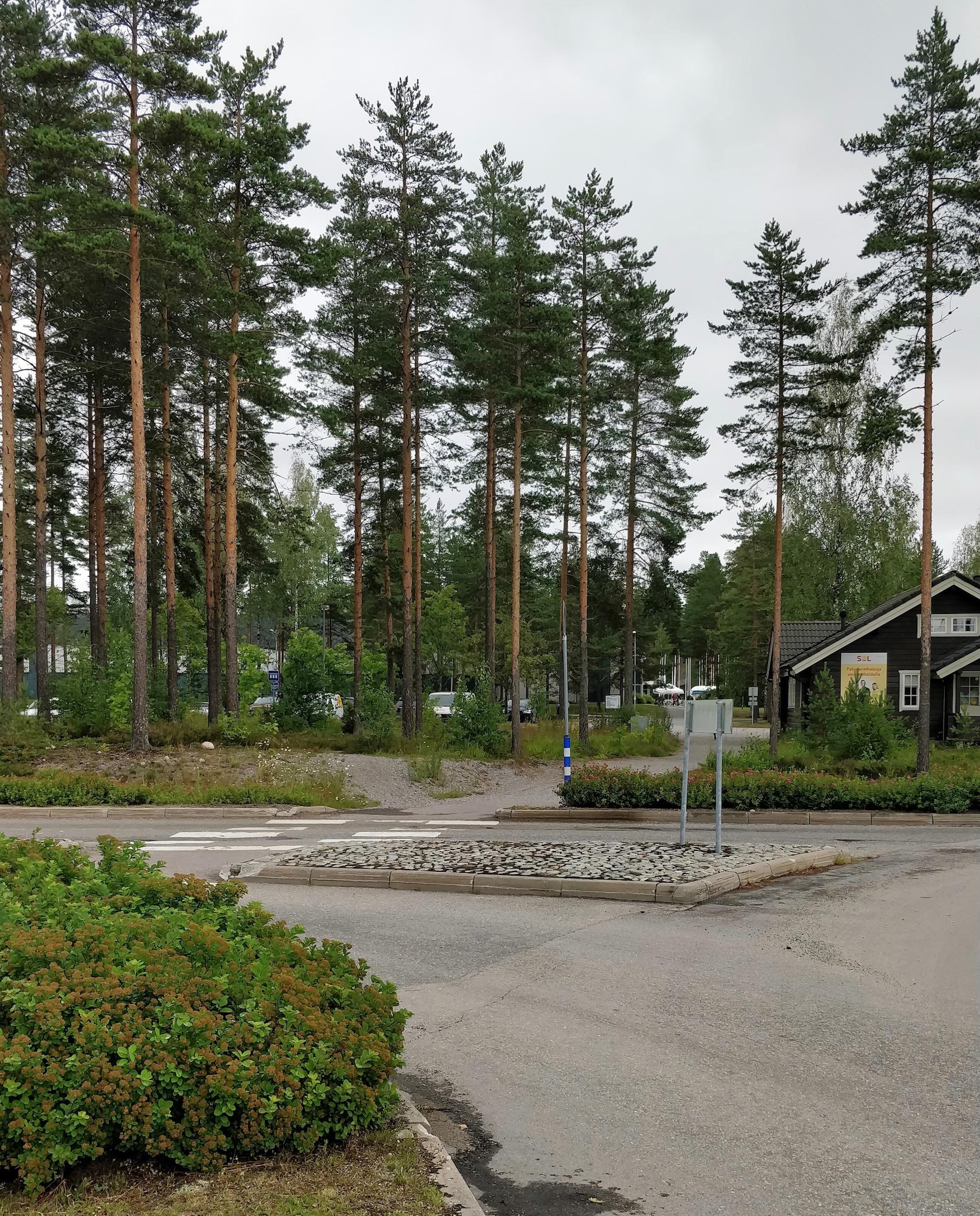 Kuvan etualalla näkyvä metsä on tapahtumapaikka. Metsän takana on Urheiluopiston päärakennus.