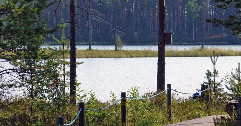 EU:n mantereen itäisin piste sijaitsee Ilomantsin kunnan Virmajärvellä pienessä saaressa.