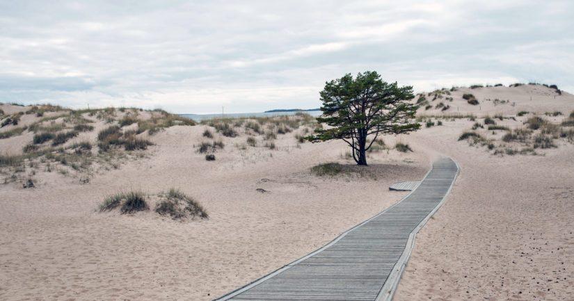 Yyterin kilometrien pituinen hiekkaranta Porin rannikolla on suosittu kesämatkailukohde.